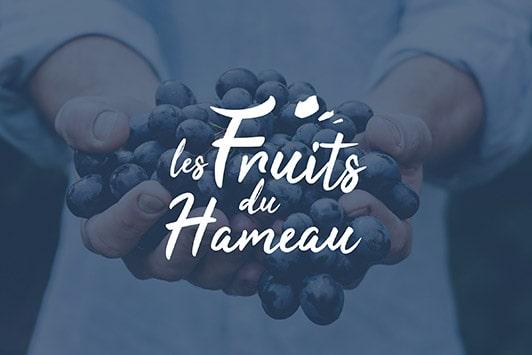 logo-producteur de fruits-Tain l'hermitage-oriane michaud